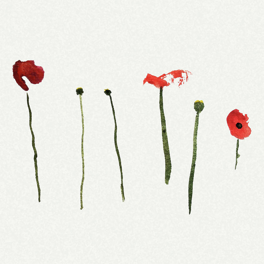 Poppy Painting - Red Poppies by Stephanie Peters