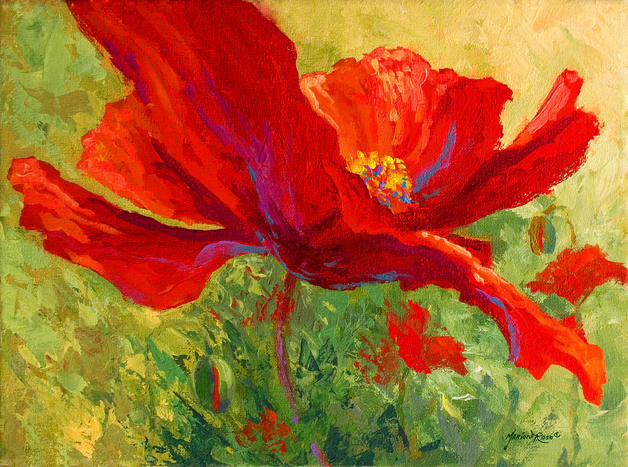 Poppies Painting - Red Poppy I by Marion Rose