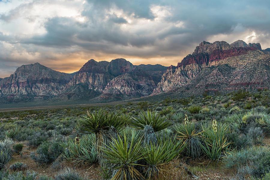 Red Rock Canyon by Chuck Jason