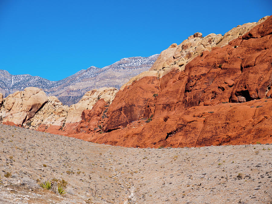 America Photograph - Red Rock Canyon by Rae Tucker