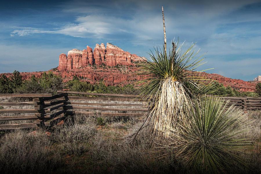 Red Rock Formation In Sedona Arizona Photograph