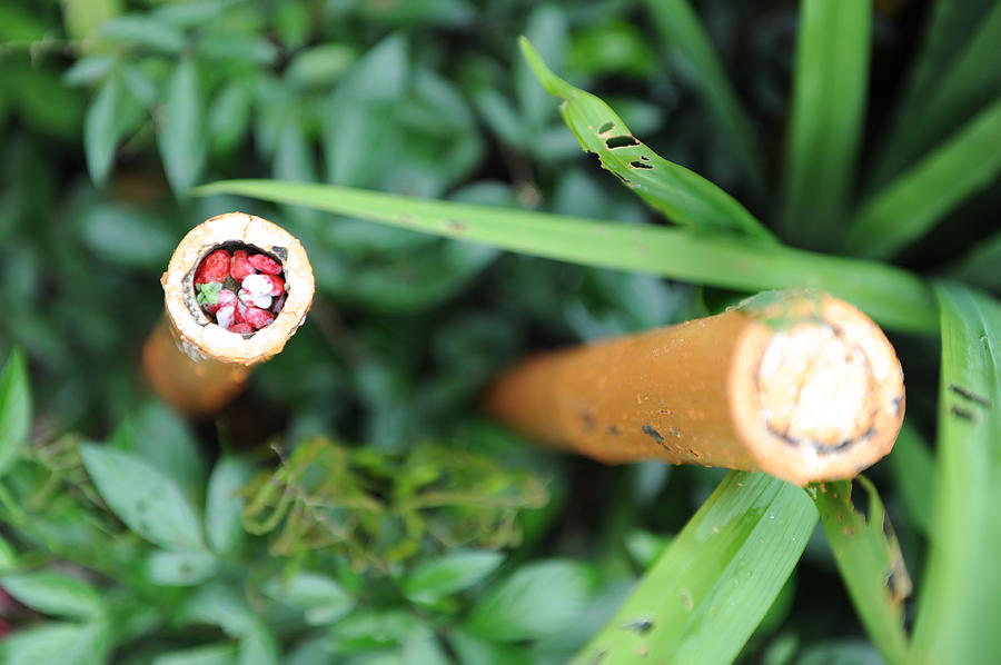 Red Photograph - Red Rocks In A Bamboo Stick by Jessica Rose