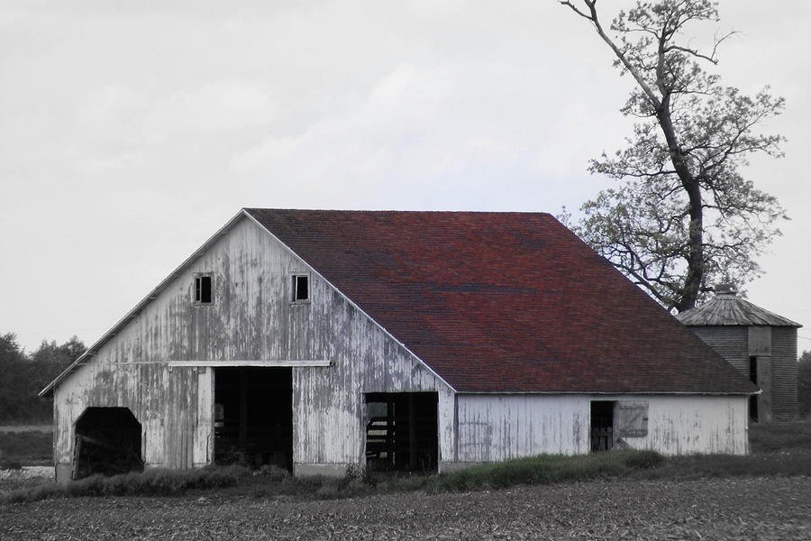Barn Photograph - Red Roof Barn by Ed Smith