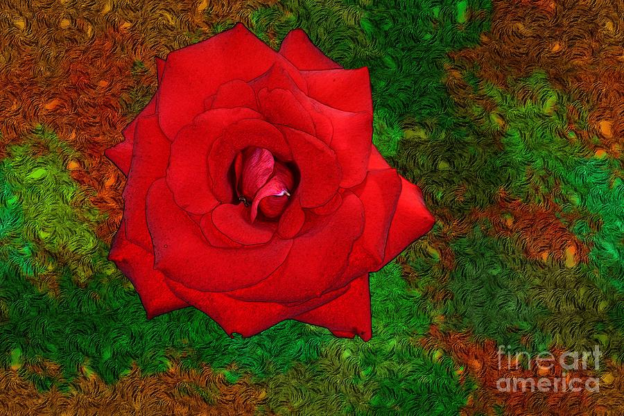 Vincent Van Gogh Photograph - Red Rose 2 by Jean Bernard Roussilhe