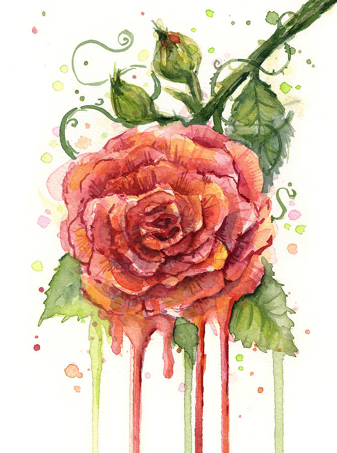 Red rose dripping watercolor painting by olga shvartsur for How to paint a rose watercolor