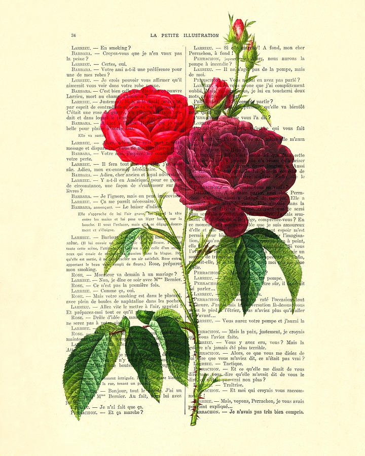 Red Rose Digital Art - Red Roses For Valentine by Madame Memento