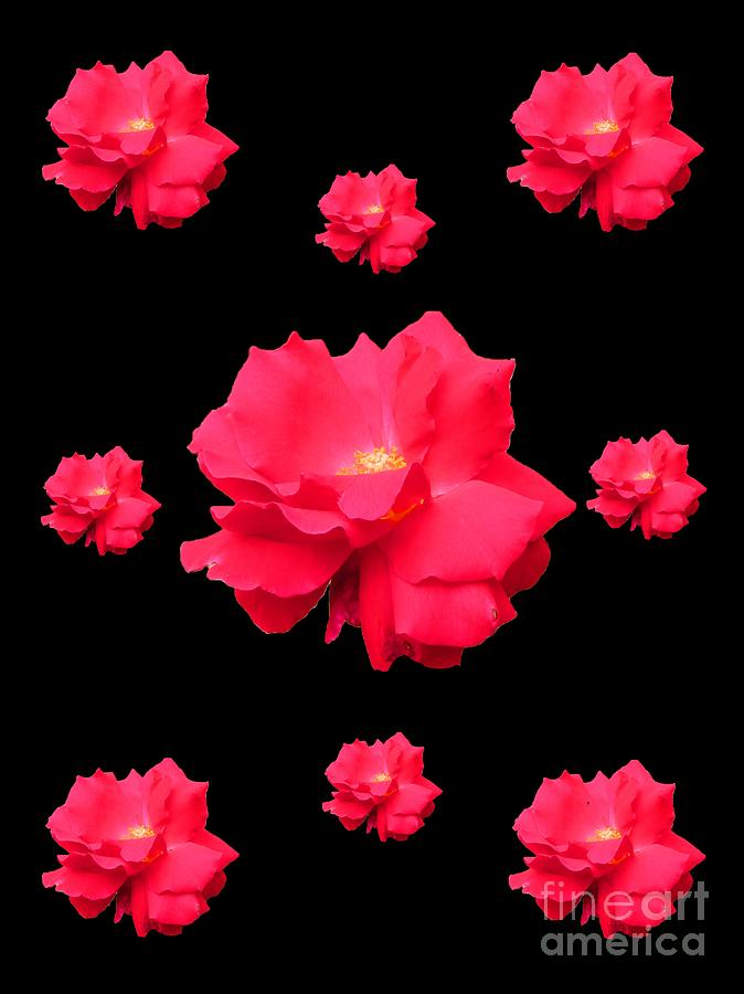 Red Digital Art - Red Roses by John Michael Grant