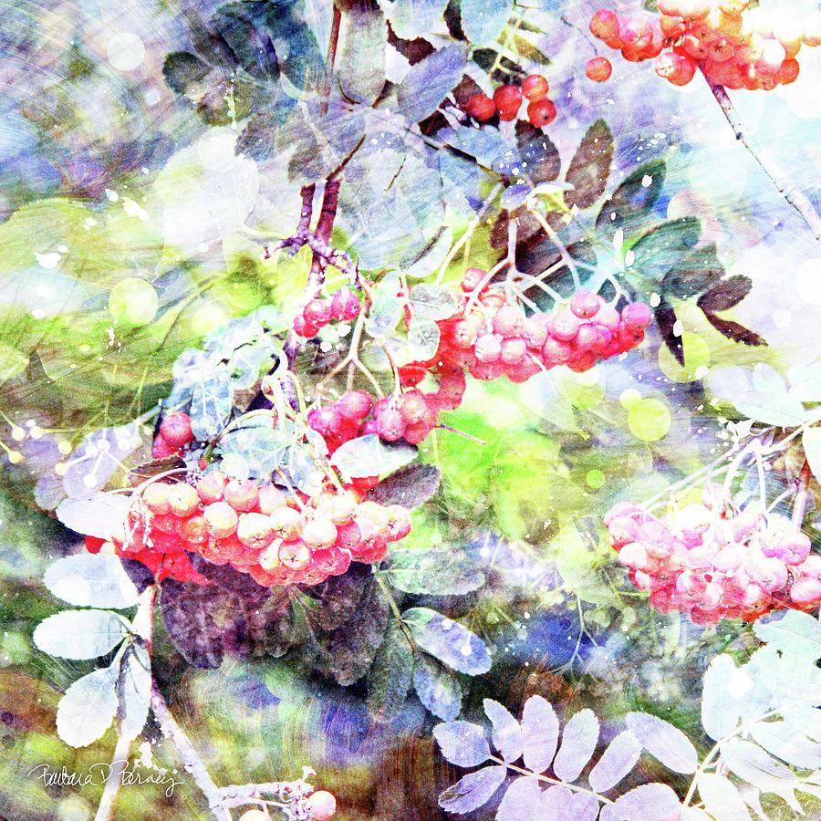 Red Rowen by Barbara Berney