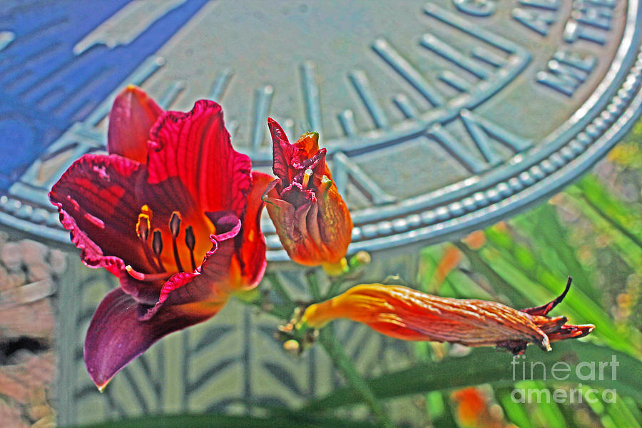 Red Rusty Lilly And Blue Sundial  Photograph by David Frederick