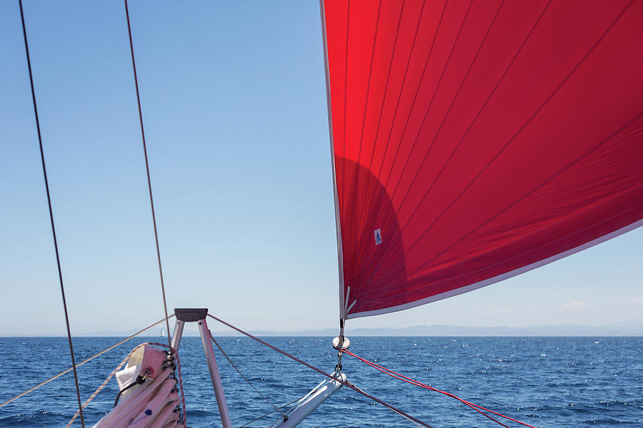 Red Sail on a Catamaran by Clare Bambers