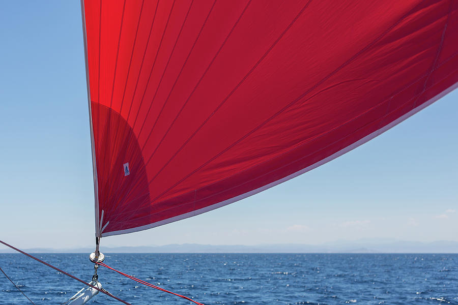 Red Sail on a Catamaran 2 by Clare Bambers