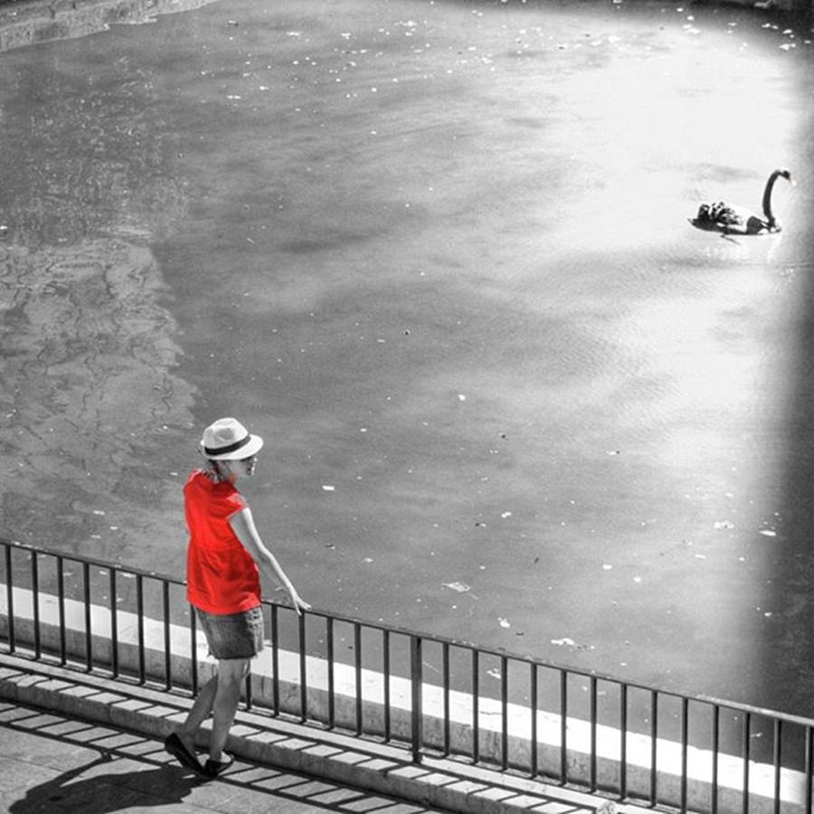 Palmademallorca Photograph - Red Shirt, Black Swanla Seu, Palma De by John Edwards