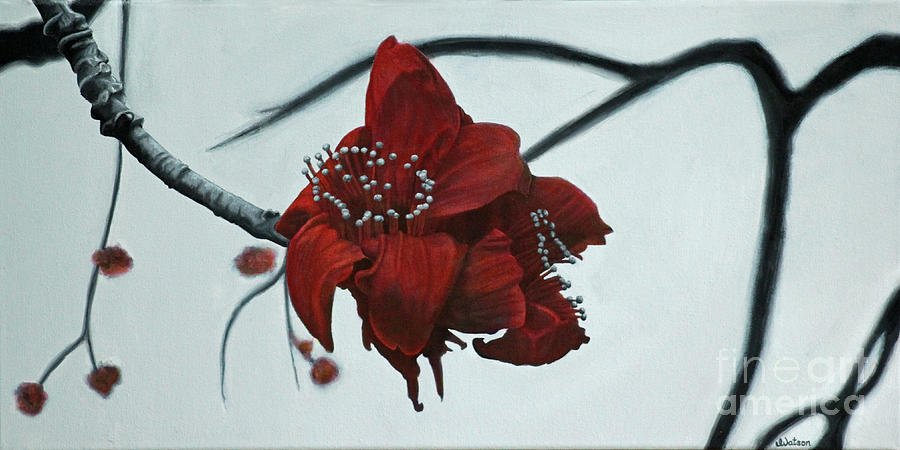 Flower Painting - Red Silk Cotton Flower by Jennifer Watson