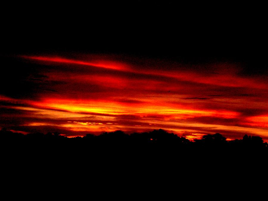 Photo Photograph - Red Sunset by Kevin Steven