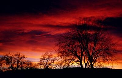 Sunset Photograph - Red Sunset by Susan Peirce