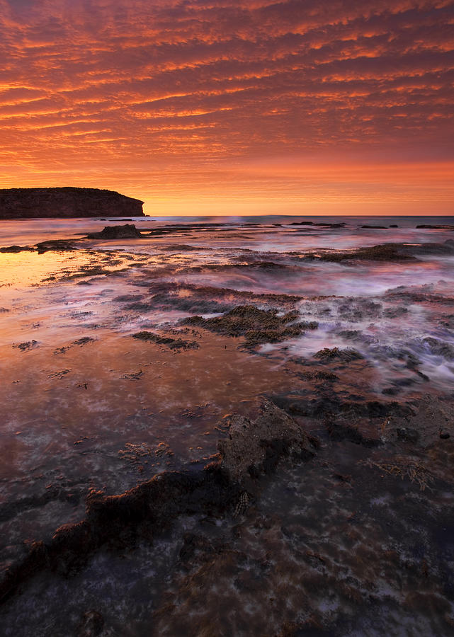 Sunrise Photograph - Red Tides by Mike  Dawson