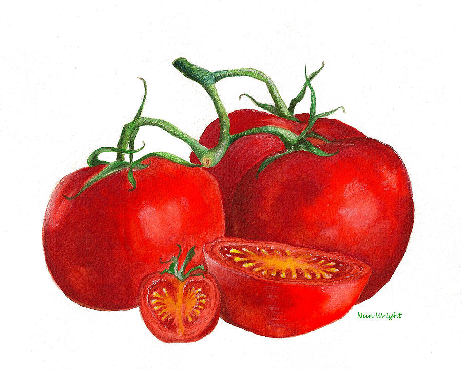 Vegetables Painting - Red Tomatoes by Nan Wright