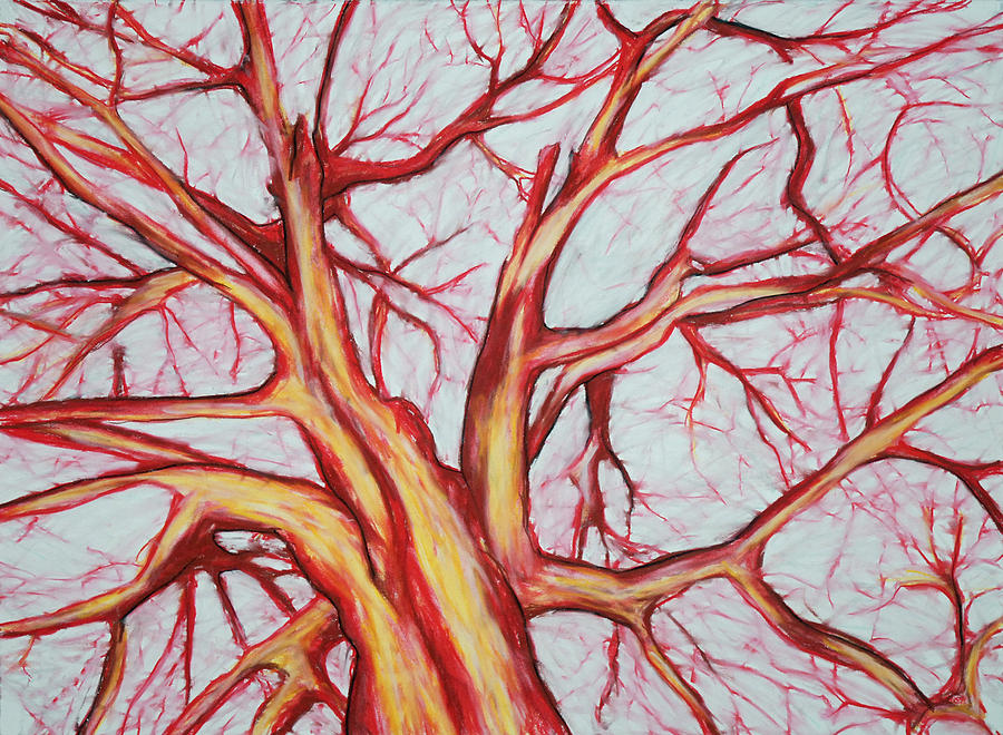 Tree Drawing - Red Tree by John Terwilliger
