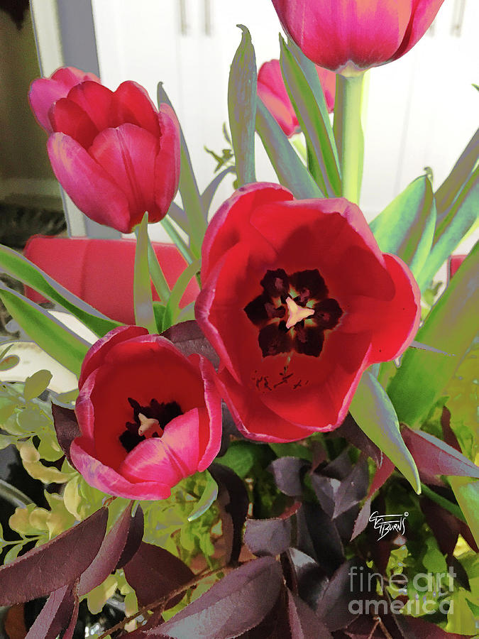 Red Tulips Bouquet  by GG Burns