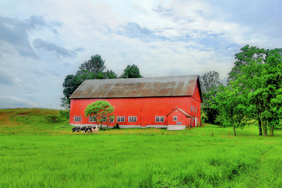 Barn Photograph - Red Vermont Barn by Brian Pflanz