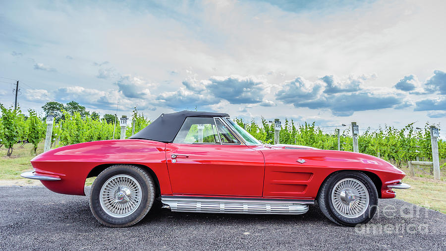 Auto Photograph - Red Vintage Corvette Sting Ray Vineyard by Edward Fielding