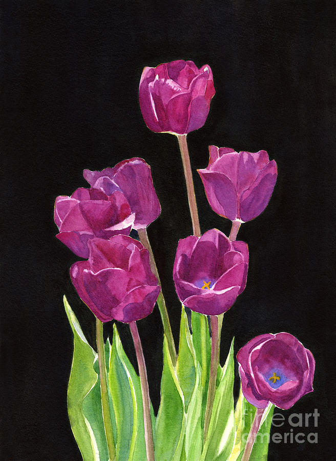 Red Violet Tulips With Black Background Painting By Sharon Freeman