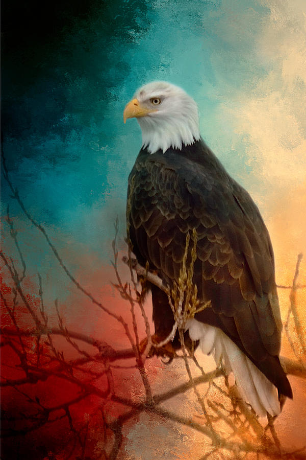 Red White And Blue Eagle Photograph By Gene Wick