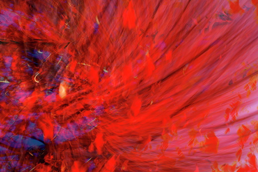 Red Digital Art - Red Wind by Guy Crittenden