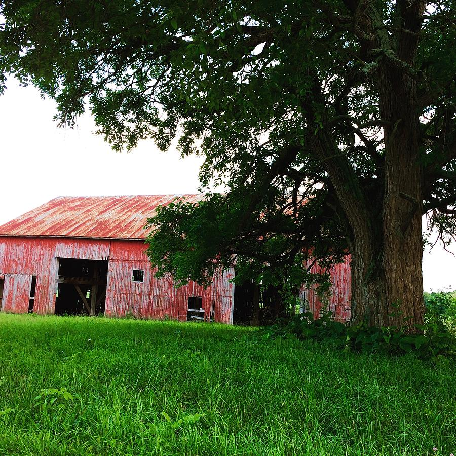 Red Photograph - Red Wood Barn by Ranchers Eye Photography