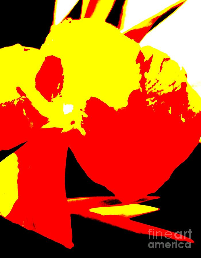Abstract Photograph - Red Yellow Abstract by Eric  Schiabor