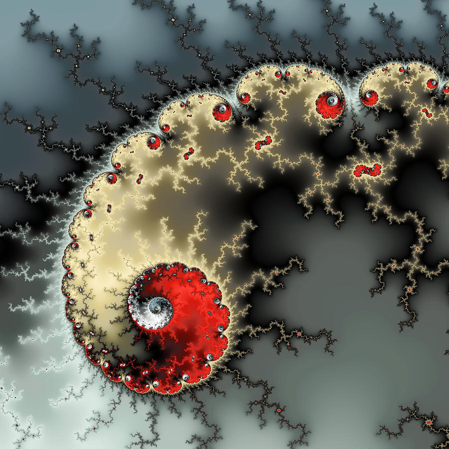 Fractal Photograph - Red Yellow Grey And Black - Amazing Mandelbrot Fractal by Matthias Hauser