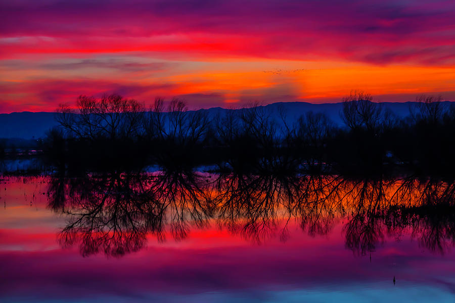 Red Photograph - Reddening Sunset by Garry Gay