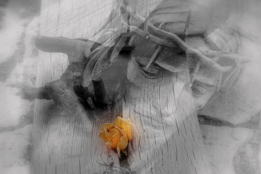 Thorns Photograph - Redemption.. by Al  Swasey