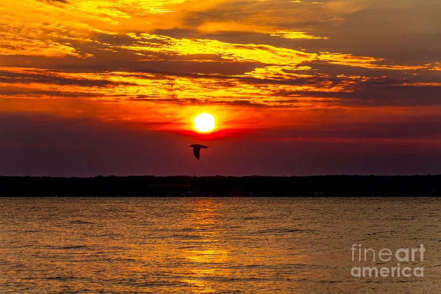Sunrise Photograph - Redeye Flight by William Norton