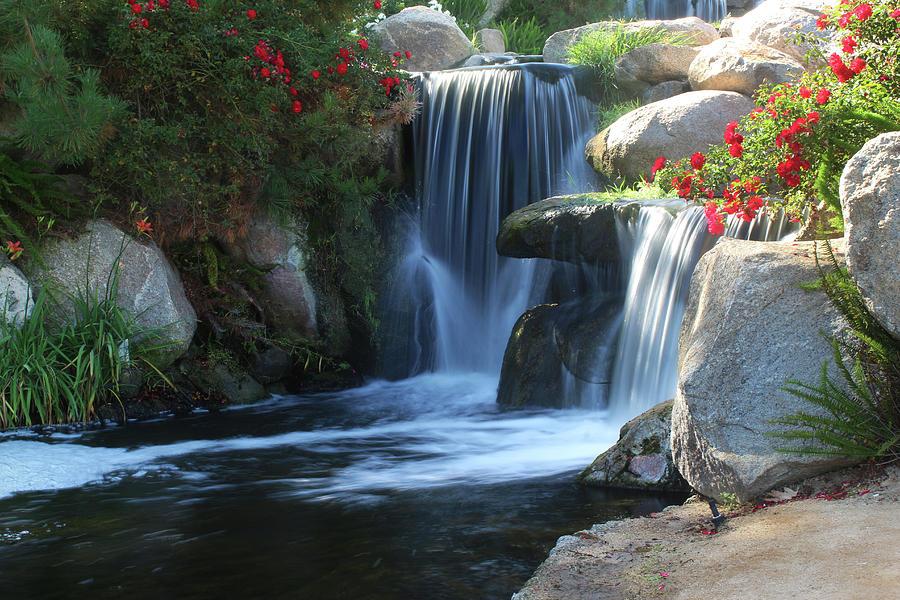 Water Photograph - Redhawk Waterfall 5 by Richard Stephen