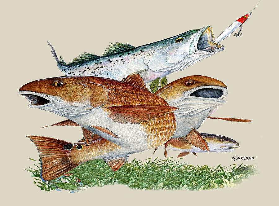 Redfish Painting - Reds and Trout by Kevin Brant