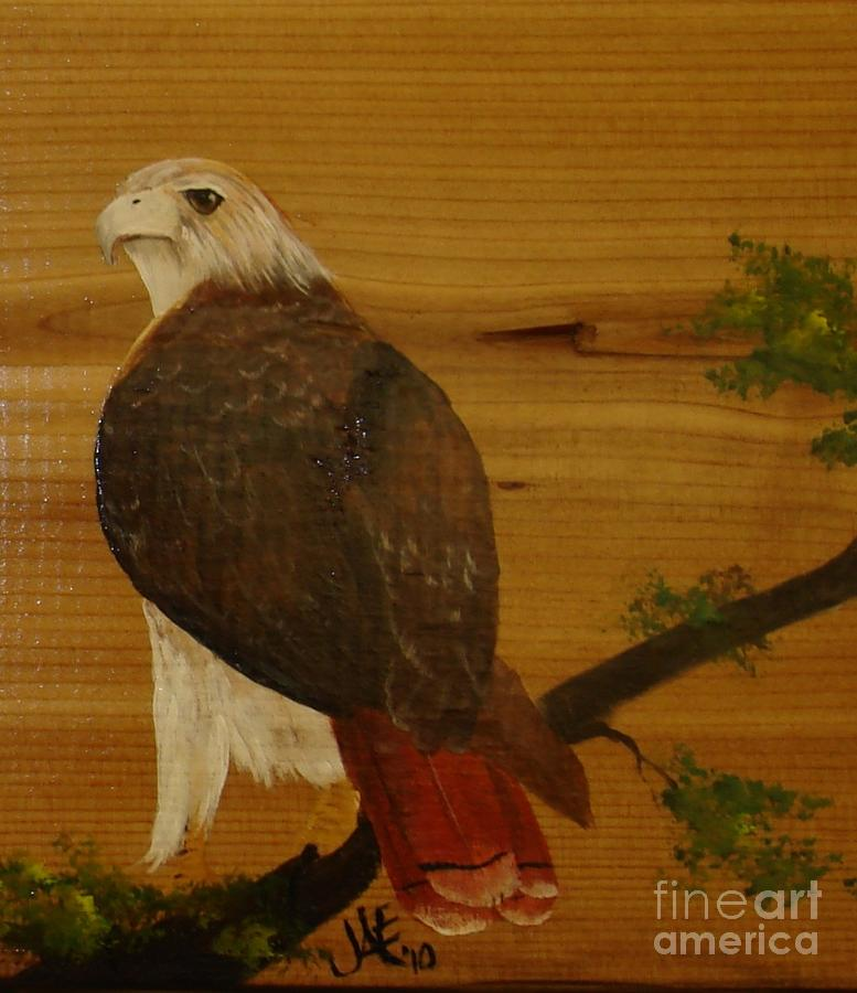 Red Tail Hawk Painting - Redtail by Jena Gillam