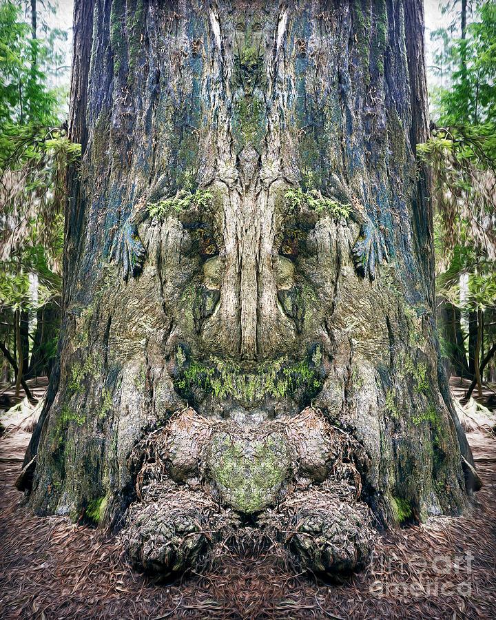 Tree Bark Face Paint