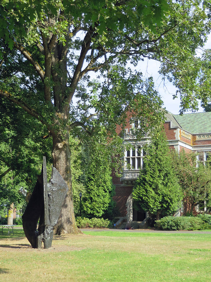 Reed College Portland Oregon by Elizabeth Rose