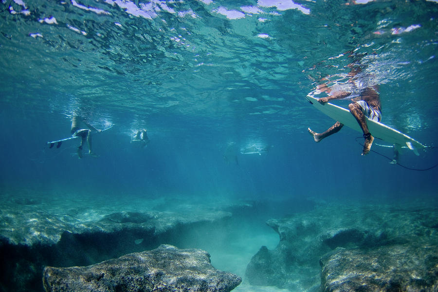 Under Water Photograph - Reef Surfers by Sean Davey