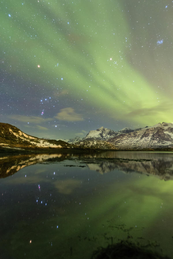 Northern Lights Photograph - Reflected Orion by Alex Conu