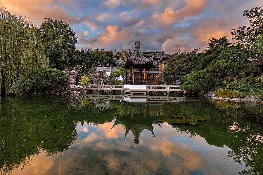 Chinese Garden Photograph - Reflecting At Chinese Garden by David Gn