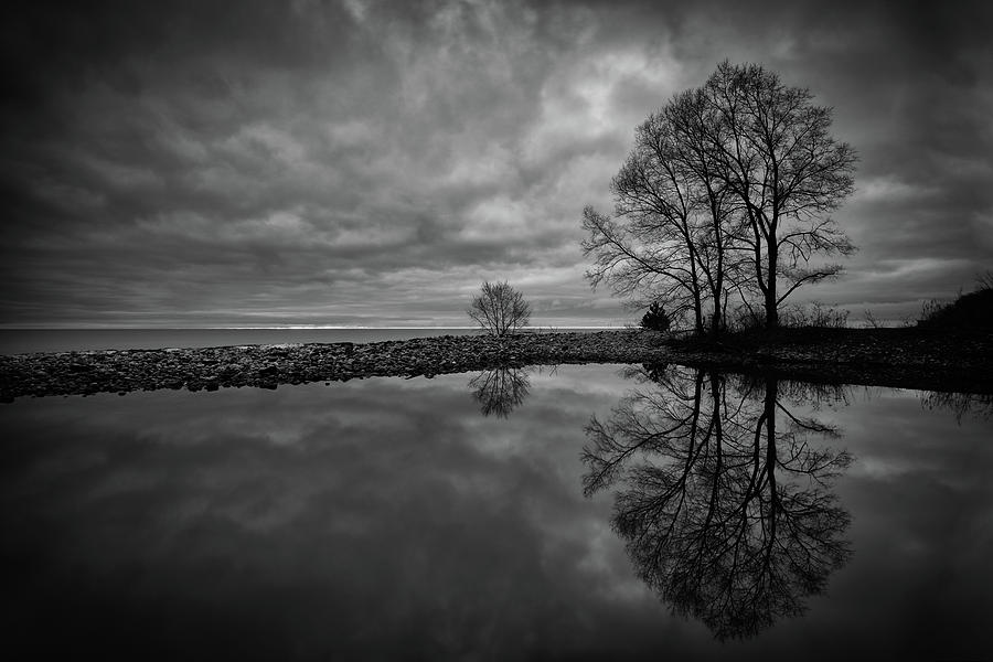 Reflecting by Edward Deiro