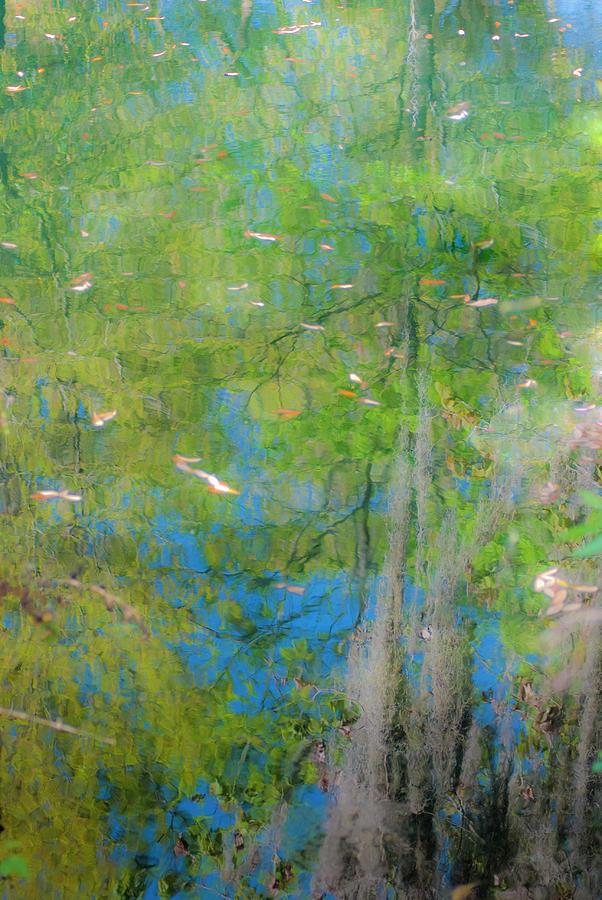 Pond Photograph - Reflecting On Abundant Humidity by Sean Holmquist