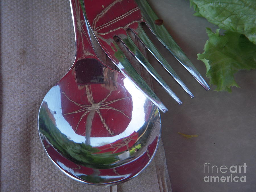 Reflection Photograph - Reflecting On Lunch by Deborah Finley