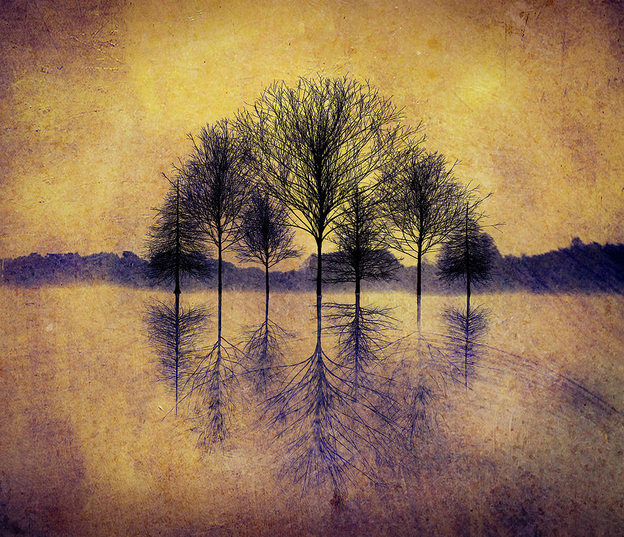 Reflecting Trees by Paul Bartell
