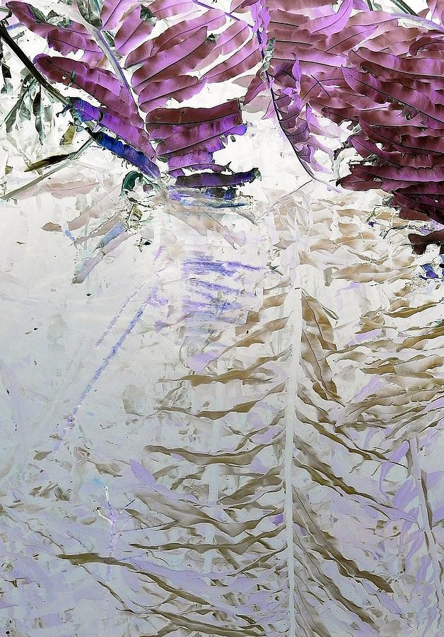 Reflection by John Hintz