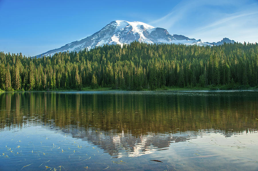 Reflection Lake by Crystal Hoeveler