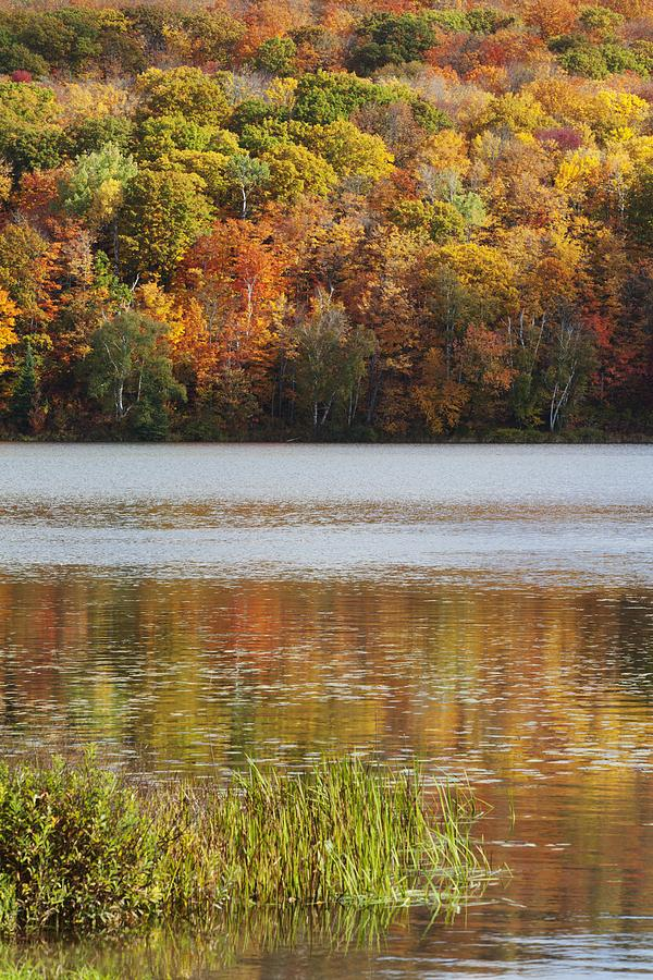 Shoreline Photograph - Reflection Of Autumn Colors In A Lake by Susan Dykstra