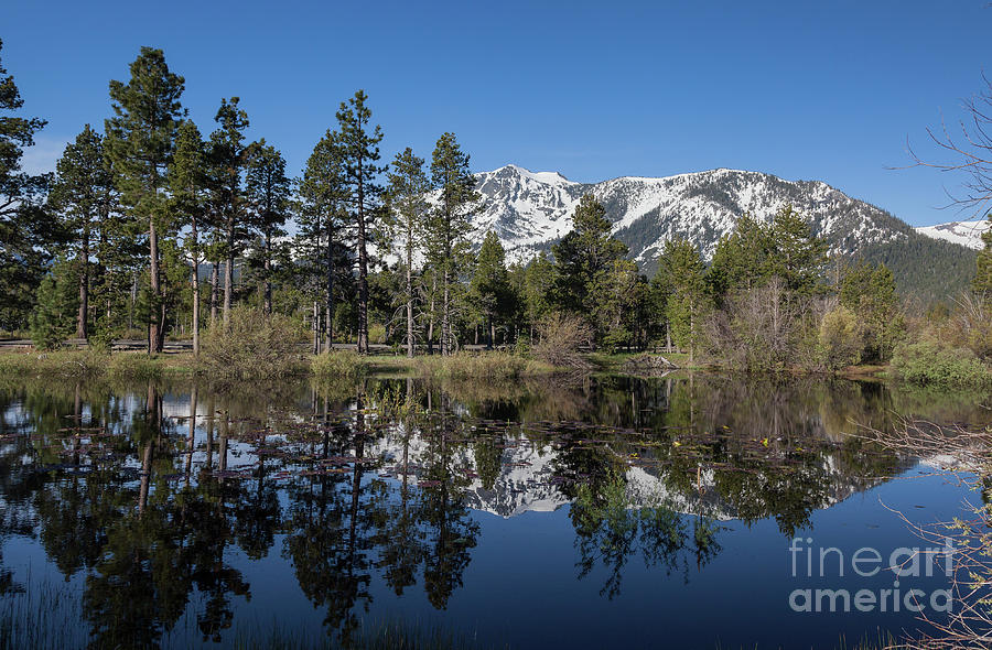 Mountains Photograph - Reflection Of Mount Tallac by Webb Canepa